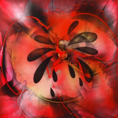 Poppy Burst I by Aleksandra Rdest