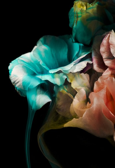 Tainted Love by Javiera Estrada