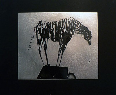 Horse Etching by Robert Toll