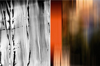Untitled Diptych #1, 2007