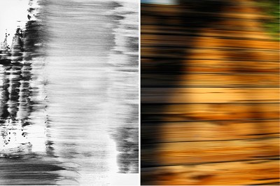 Untitled Diptych #8, 2007