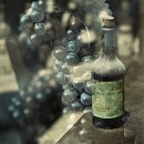 Vintage Wine Tuscany 3 by Alan Blaustein